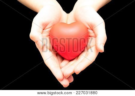 Holding A Red Heart For Love