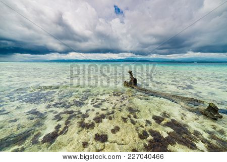 Tropical Beach, Caribbean Sea, Transparent Turquoise Water, Remote Togean Islands (togian Islands),