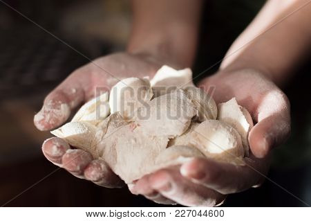Atmospheric Photo Of The Young Females Hands Holding Homemade Potstickers