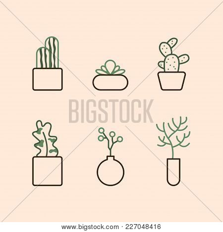 Icons In A Linear Style With Domestic Plants