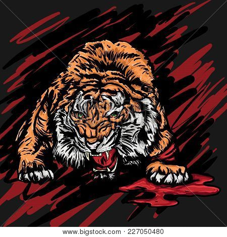 Vector Illustration Of A Crouched Wounded Tiger Growling With Rage