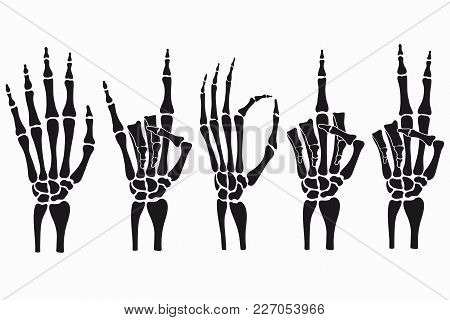 Skeleton Hand Gestures Set. Collection Of Hand-drawn Bones Signs. Vector Illustration.