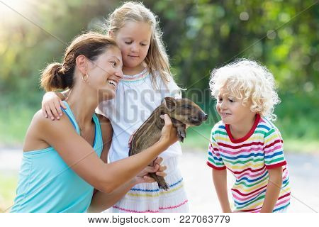 Kids Play With Farm Animals. Child Feeding Domestic Animal. Mother, Little Boy And Girl Hold Wild Bo