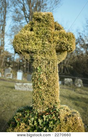 Very Old Gravestone Covered In Lichen And Ivy