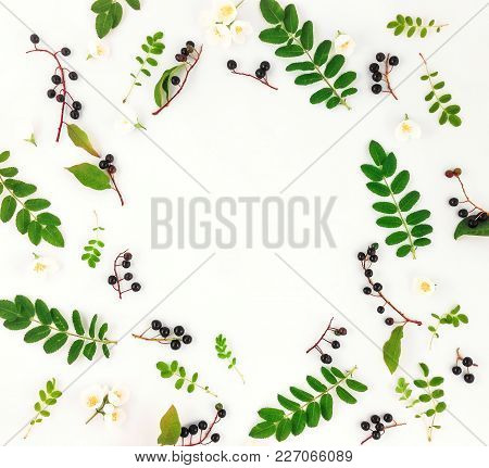 Colorful Bright Round Frame Of Leaves, Berries And Flowers. Flat Lay, Top View