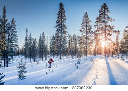 Panoramic View Of Man Cross-country Skiing On A Track In Beautiful Winter Wonderland Scenery In Scan