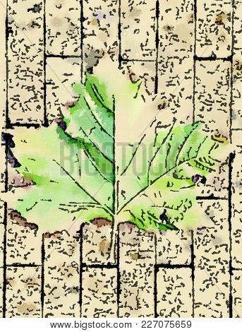 Digital Watercolor Painting Of The Back Of A Green Leaf On A Brick Sidewalk. Vintage Effect Painting