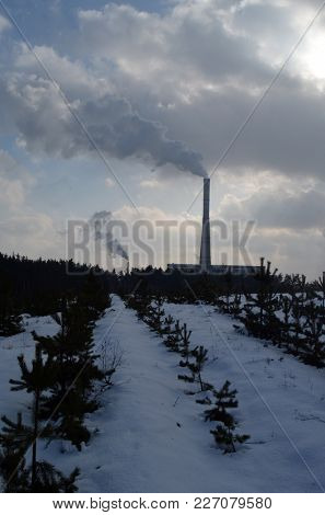 Chimney of power plant in the winter forest. Kiev