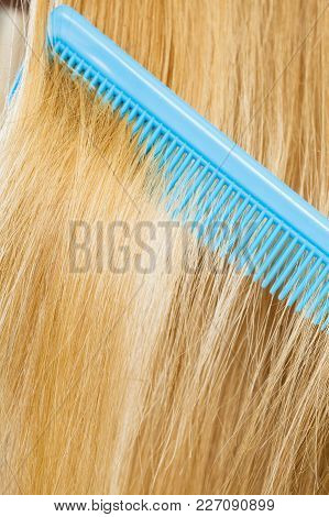 Combing And Brushing Concept. Routine Everyday Hygiene. Close Up Of Detail Blue Comb In Blonde Smoot