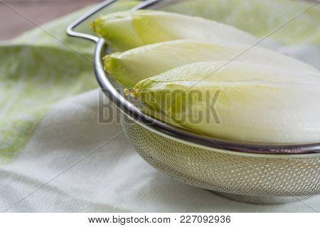 Fresh Raw Belgian Bitter Chicory Salad