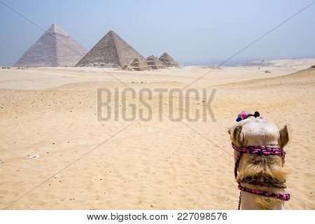 The Ancient Pyramids Of Giza, Cairo, Egypt