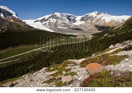 Wilcox Pass, And The Columbia Icefield, Jasper National Park, Alberta, Canada