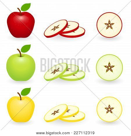 Apples Red, Green And Golden With Slices. Vector Illustration Isolated On White Background.