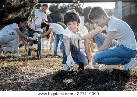 Planet Conservation. Positive Nice Smart Boys Sitting Together And Planting A Tree While Caring Abou
