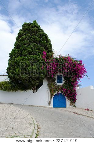 The Wall Of An Arab House Shrouded In Flowering Plants, And A Tree Against A Blue Sky In Tunisia