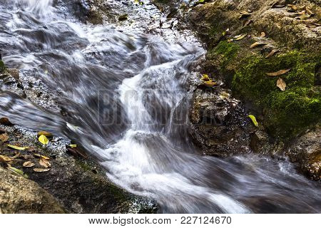 Water Stream Flowing Running Over Rocks And Moss Into A Brook Of The Waterfall In The Tropical Fores