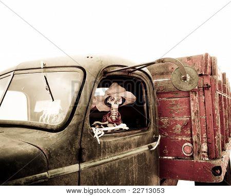 Skeleton Driving