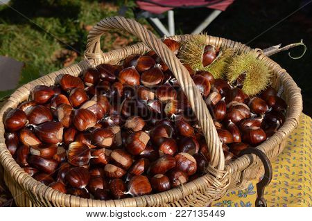 Chestnuts In A Braided Basket On A Table