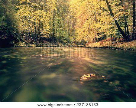 Beautiful Landscape With Wild River In Autumnal Forest. Tranquil Scene With River.