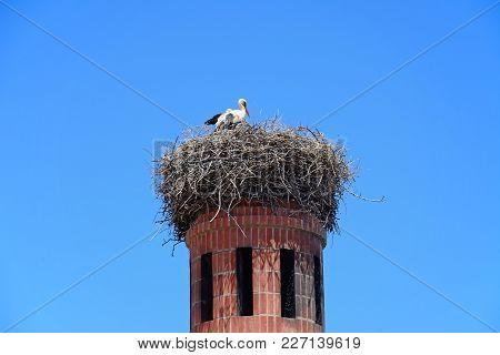 Stork Nesting On Top Of A Brick Chimney, Portimao, Algarve, Portugal, Europe.
