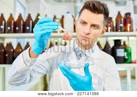 Handsome Young Researcher With Stylish Haircut Wearing White Coat And Rubber Gloves Analyzing Result