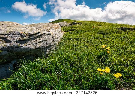 Rocks And Dandelions On Grassy Hillside. Lovely Summer Nature Scenery In Mountain Under The Blue Sky