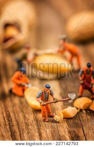 Miniature Figures Working On Peanuts Macro Photography On Wood Table