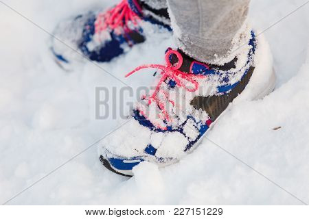 Trainers Covered In Snow. Female Shoes Outdoors. Fashion Clothing Nature Outdoor Concept.