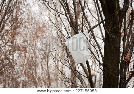 White Plastic Bag Stuck On The Tree Branch Carried By The Wind, Nature Or Park Pollution With Junk A