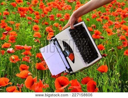 Opium Poppy, Agile Business, Ecology. Poppy, New Technology, Remembrance Day. Vintage Typewriter In