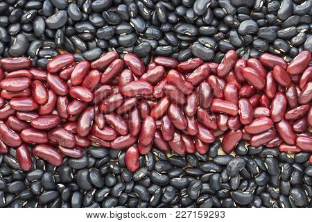 A Pile Of Black Beans And Red Beans, Divided Into Two Rows On The Wood Table. With Copy Space For Yo