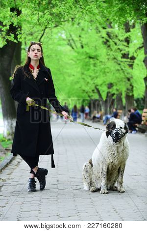 Gir Walk Dog In Spring Park. Woman Owner With Pet Outdoor. Love, Care, Trust. Pet, Companion, Friend