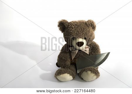 Soft Bear With A Knife Dangerous Weapon