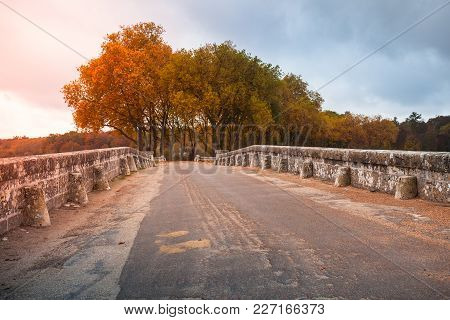 French Park Landscape, Perspective Of Road Going On Old Stone Bridge And Autumn Trees On A Backgroun