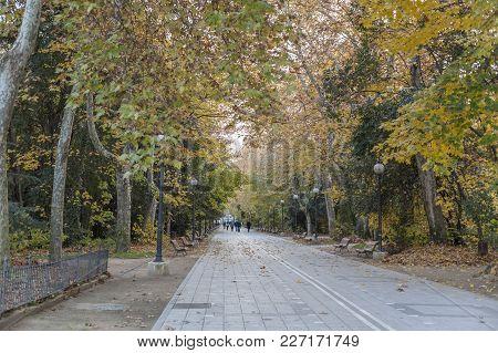 Valladolid,spain-november 19,2012: Autum Day In Promenade Of Campo Grande, Public Park In Valladolid