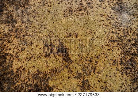 Grunge Rusted Metal Texture. Abstract Rusty Metal Texture Background. Rusty Metal Grunge Background.