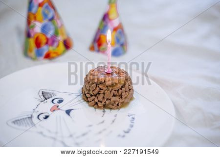 Cake From Cat Food On A Birthday Party With A Cap And A Candle