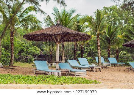 Sun Beds And Sun Umbrellas To Tourists.