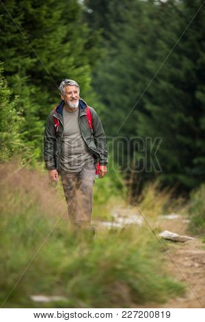 Active senior hiking in high mountains - enjoying his retirement in an active way
