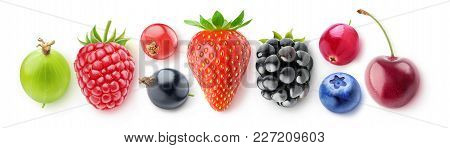Isolated Collection Of Berries