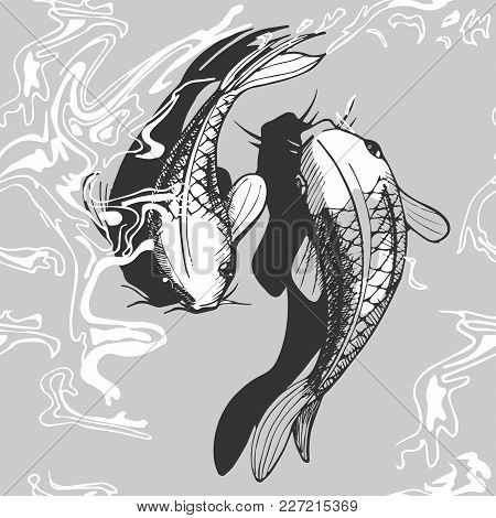 Vector Illustration Of A Koi Fish. Black And White Handdrawn Style.