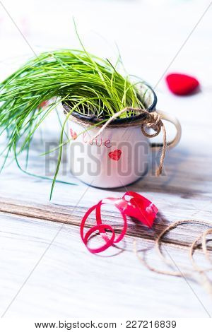 Mug With A Plant On A Wooden Background.