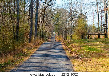 A Long Country Road Snaking Through The Woods And Fields