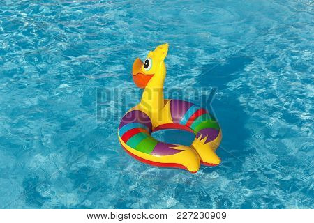 Inflatable Pelican Swims In The Pool, Inflatable Toy