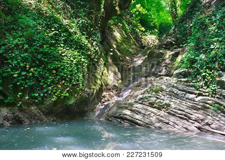 Small Amazing Lake With Stagnant Water And A Creek Flowing Into It Among The Jungle