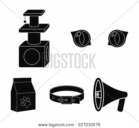 Cat's-eye, Cat Lodge, Collar, Package With Food.cat Set Collection Icons In Black Style Vector Symbo