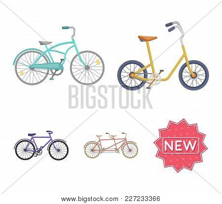 Children's Bicycle, A Double Tandem And Other Types.different Bicycles Set Collection Icons In Carto