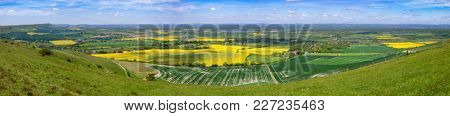 Summer landscape with yellow rapeseed fields as viewed from South Downs hill in  Sussex, Southern England, UK (panoramic view)