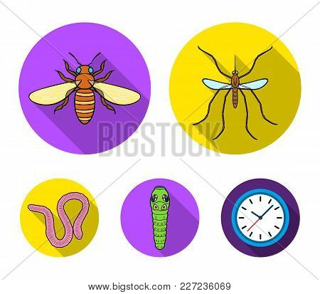 Worm, Centipede, Wasp, Bee, Hornet .insects Set Collection Icons In Flat Style Vector Symbol Stock I
