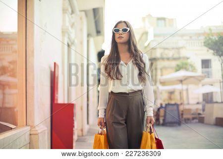 Classy lady doing shopping